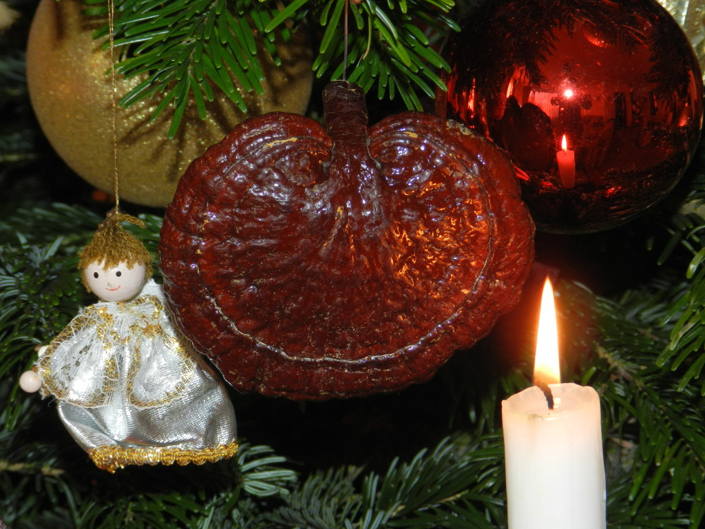 dxn karácsony